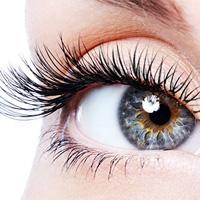 e46a697586f Ambers Beauty Studio - Essentials